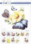 A5 Boek Vlinders